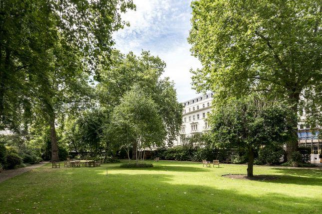Communal Garden of Kensington Gardens Square, London W2
