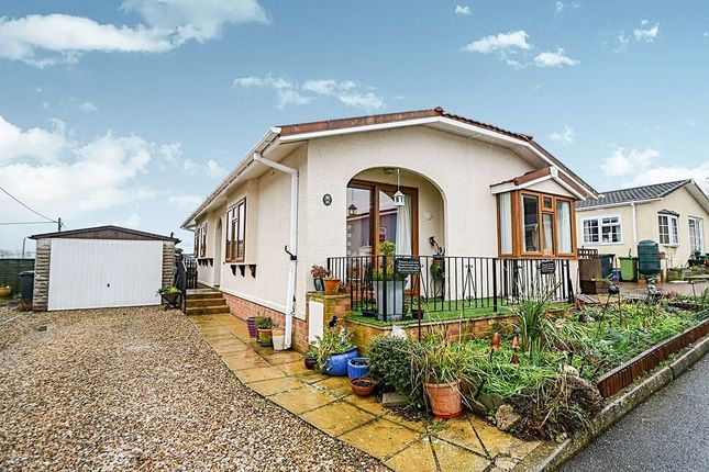 Thumbnail Bungalow for sale in The Avenue, Chudleigh Knighton, Chudleigh, Newton Abbot