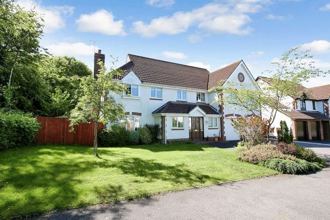 Thumbnail Detached house for sale in Hornbeam Gardens, West End, Southampton