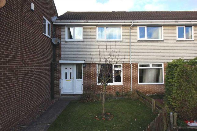 Thumbnail Terraced house to rent in Shiel Gardens, Beaconhill Green, Cramlington