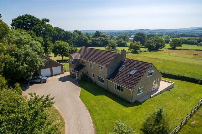Thumbnail Equestrian property for sale in Windmill Hill, Ashill, Ilminster, Somerset