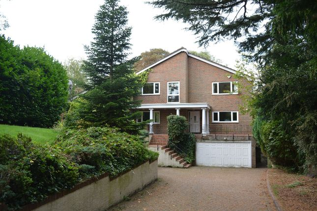 Thumbnail Detached house to rent in The Avenue, Tadworth, Surrey