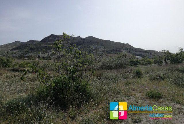 Foto 20 of Albox, Almería, Spain