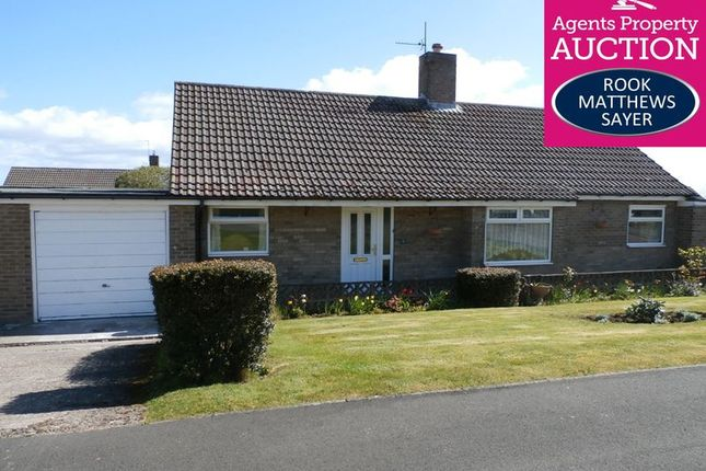 Thumbnail Bungalow for sale in Meadow Riggs, Alnwick