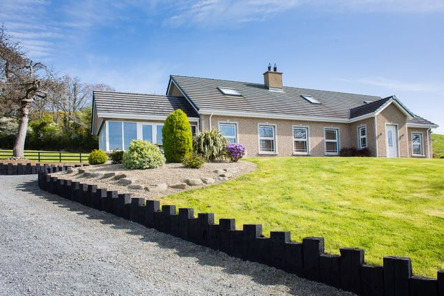 Thumbnail Detached house for sale in Mill Road, Ballyroney, Banbridge