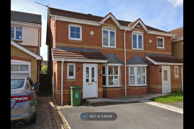 Thumbnail Semi-detached house to rent in Brough Field Close, Ingleby Barwick, Stockton-On-Tees
