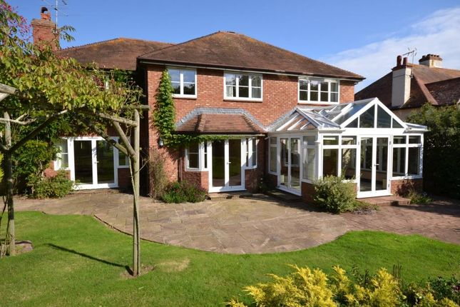 Thumbnail Detached house to rent in Copp Hill Lane, Budleigh Salterton, Devon