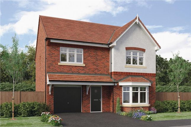 "Thumbnail Detached house for sale in ""Hollingwood"" at Copcut Lane, Copcut, Droitwich"