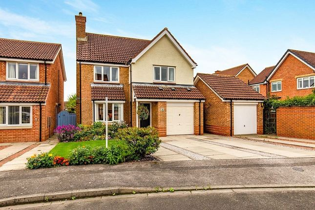 Thumbnail Detached house to rent in Carnoustie Grove, Darlington
