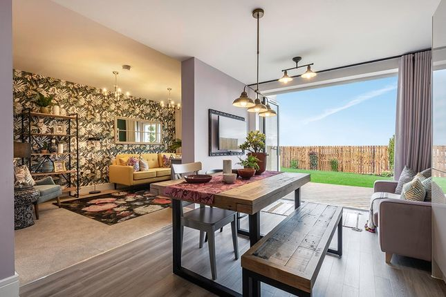 """Thumbnail Detached house for sale in """"The Newton"""" at Brora Crescent, Hamilton"""
