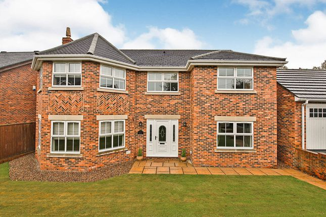 Thumbnail Detached house for sale in Meadow Grange, New Lambton, Houghton Le Spring, Durham
