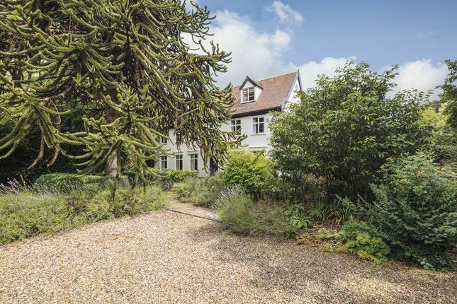 Thumbnail Detached house for sale in Beehive Yard, Denmark Street, Diss
