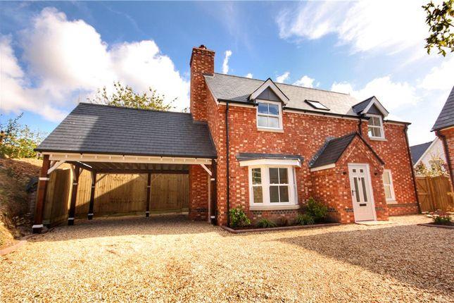 Thumbnail Detached house for sale in Portman Road, Pimperne, Blandford Forum