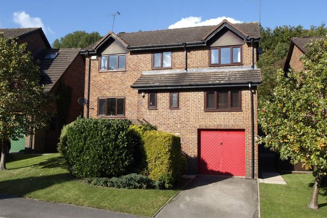 Thumbnail Detached house for sale in Black Horse Drive, Silkstone Common, Barnsley