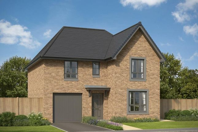 """Thumbnail Detached house for sale in """"Ballathie"""" at Kingswells, Aberdeen"""