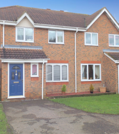 Thumbnail Semi-detached house to rent in St Davids Close, Beccles