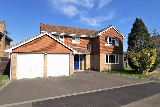 Thumbnail Detached house for sale in Martins Wood, Chineham, Basingstoke