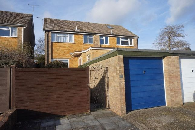 Thumbnail Semi-detached house to rent in Cherry Way, Alton