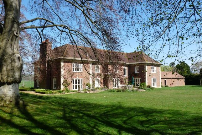 Thumbnail Detached house to rent in Hains Lane, Marnhull, Sturminster Newton, Dorset