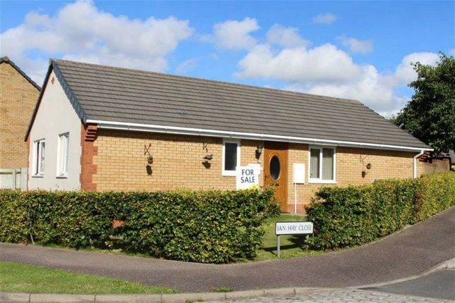 3 bed detached bungalow for sale in Ian Hay Close, Bideford