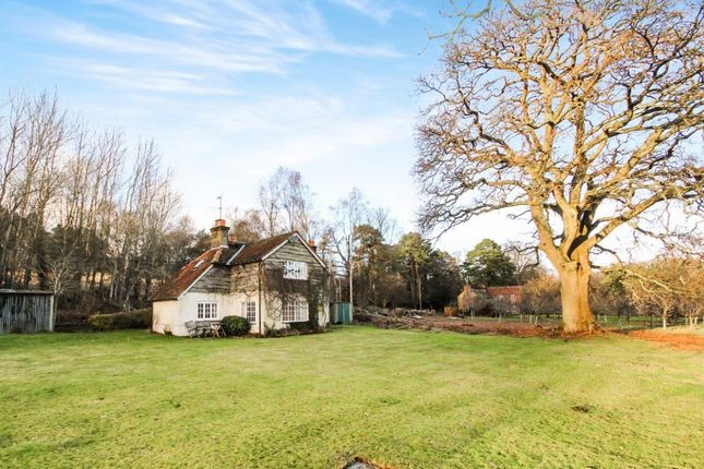 Thumbnail Property to rent in Foley Estate, Liphook