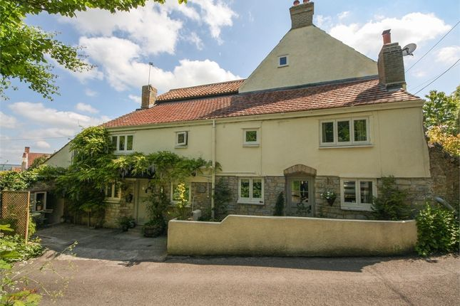 Thumbnail Cottage for sale in Rose Cottage, Mutton Lane, Wedmore, Somerset