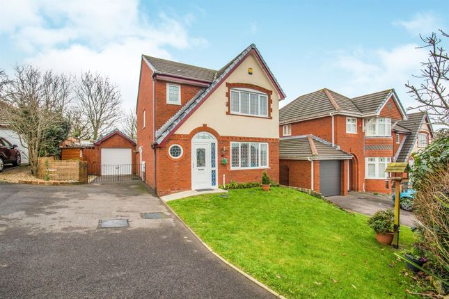 Thumbnail Detached house for sale in Blodyn Y Gog, Barry