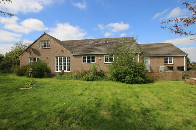 Thumbnail Bungalow for sale in Mount Pleasant, Binbrook, Lincolnshire