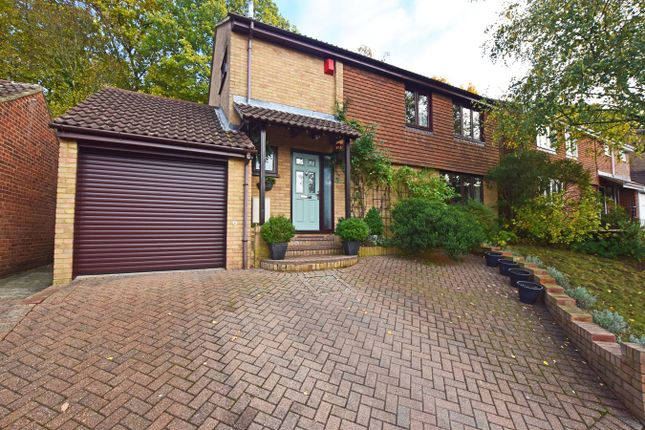 Thumbnail Detached house for sale in Stalham Court, Hempstead
