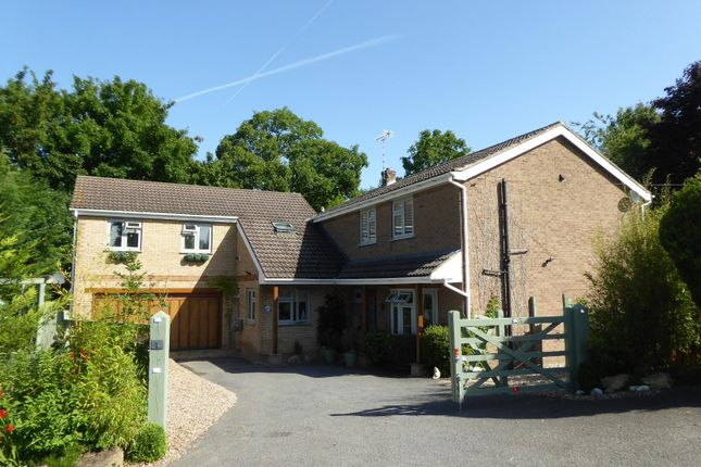 Thumbnail Detached house for sale in Barrowden Lane, South Luffenham, Oakham