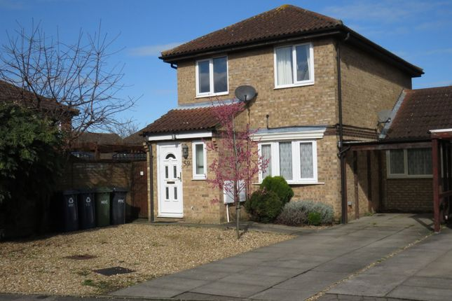 Thumbnail Link-detached house for sale in Caernarvon Road, Eynesbury, St. Neots