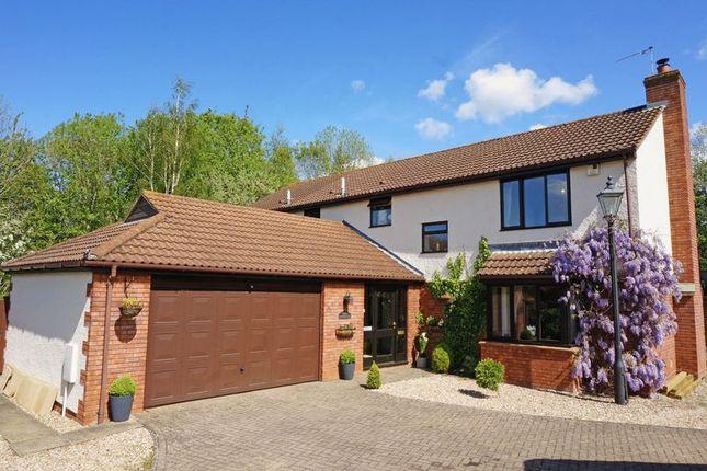 Thumbnail Detached house for sale in Killams Lane, Taunton