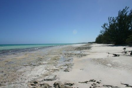 Land for sale in South Andros, The Bahamas