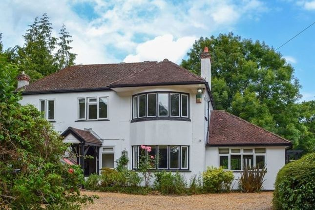 Thumbnail Cottage to rent in Sea View, Arnewood Bridge Road, Sway, Lymington