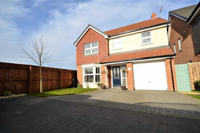 Thumbnail Property for sale in Brocklesby Avenue, Immingham