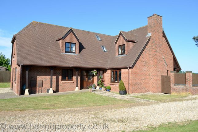 Thumbnail Detached house to rent in Main Road, Coxley, Nr Wells