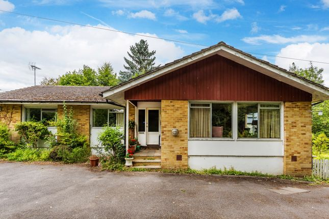 Thumbnail Detached bungalow for sale in Saxbys Lane, Lingfield