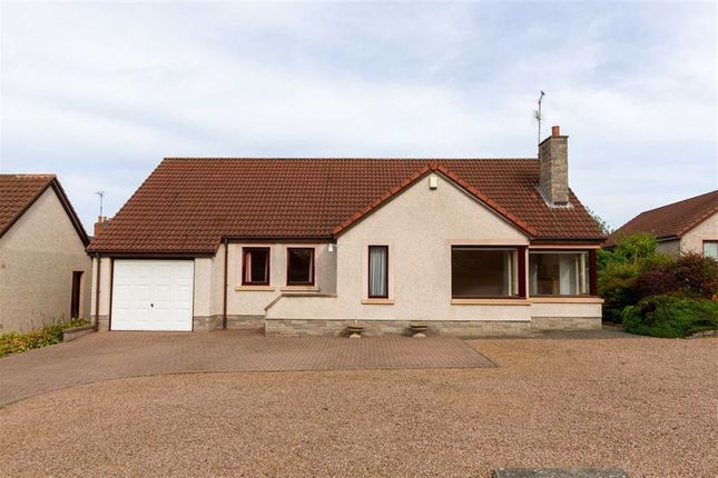 Thumbnail Detached bungalow for sale in West Street, Norham, Northumberland