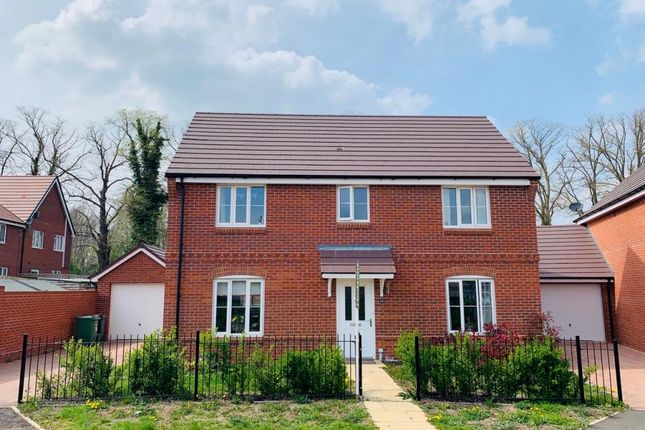 Thumbnail Detached house to rent in Morland Gardens, Abingdon