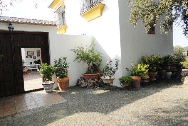 29300 Archidona, Málaga, Spain