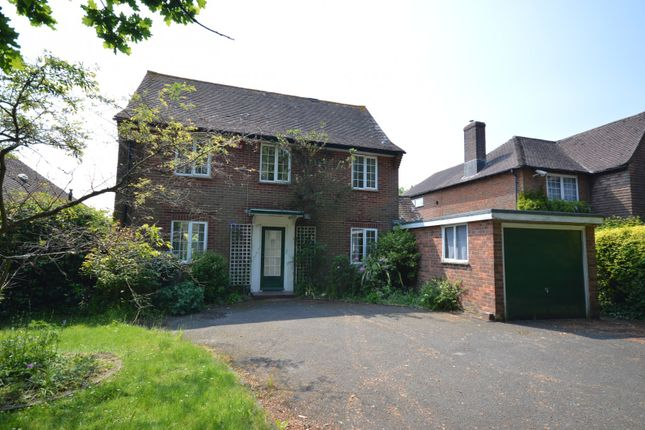 Thumbnail Detached house to rent in Broyle Road, Chichester