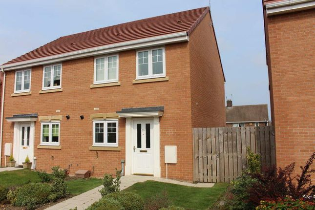 Thumbnail Semi-detached house to rent in Donside Close, Boldon, Boldon