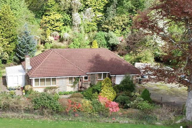 Thumbnail Detached bungalow for sale in St. Fillans, Crieff