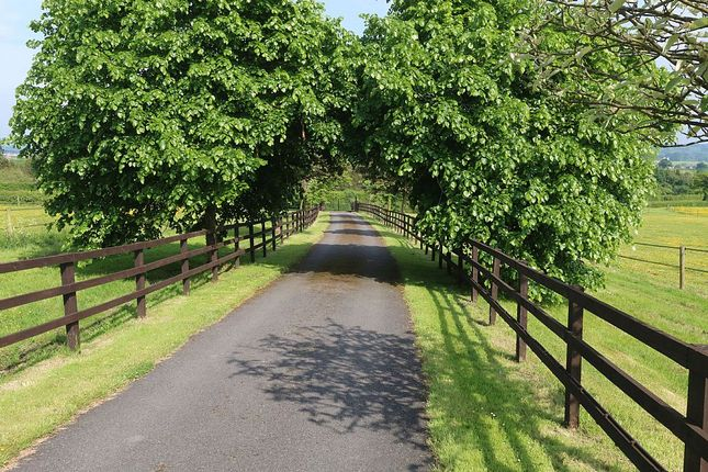 Thumbnail Equestrian property for sale in Booth Hall Farm, Clamgoose Lane, Kingsley, Stoke-On-Trent, Staffordshire