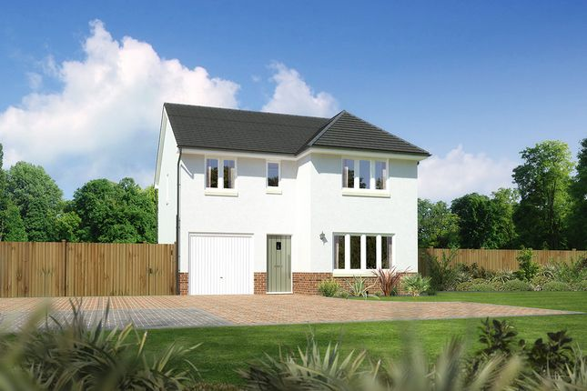 """Thumbnail Detached house for sale in """"Dukeswood"""" at Drum Farm Lane, Bo'ness"""