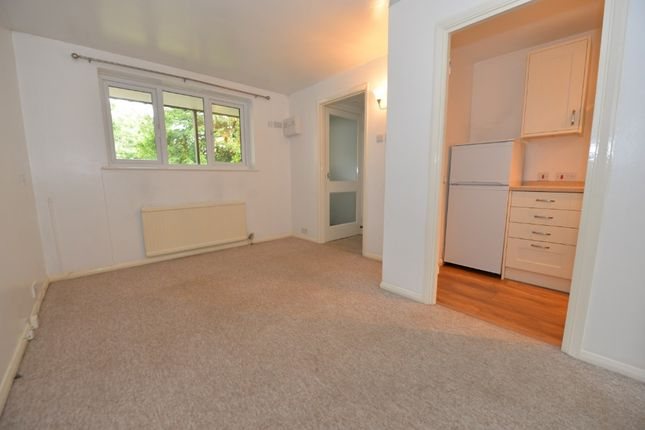 Thumbnail Flat to rent in Colebrook Street, Winchester