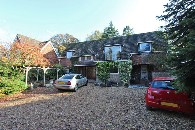 Thumbnail Detached house for sale in The Rise, Brockenhurst, Hampshire