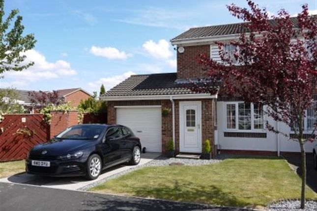 Thumbnail Semi-detached house to rent in Brackenbeds Close, Pelton, Chester Le Street