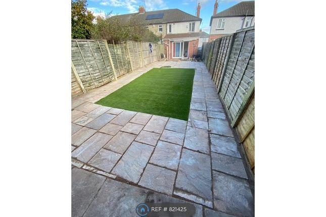 Brand New Garden Area