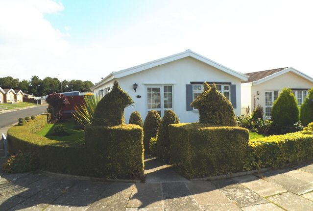 Thumbnail Bungalow for sale in Glynbridge Gardens, Bridgend